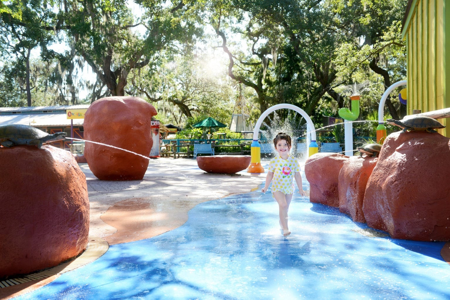 Lowry Park Zoo Splash Pad Things to Do in Tampa