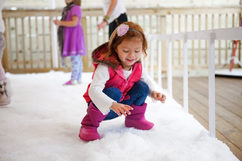 The Florida Aquarium Snow Days Things to do with the kids