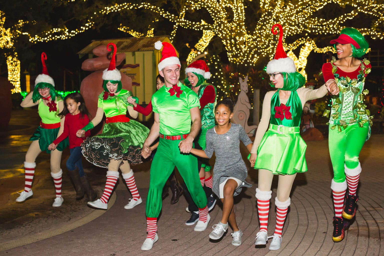 Christmas in the Wild ZooTampa