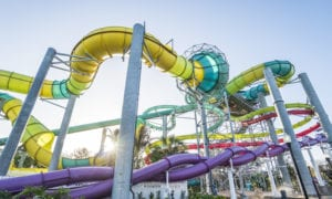water-parks-in-tampa-adventure-island
