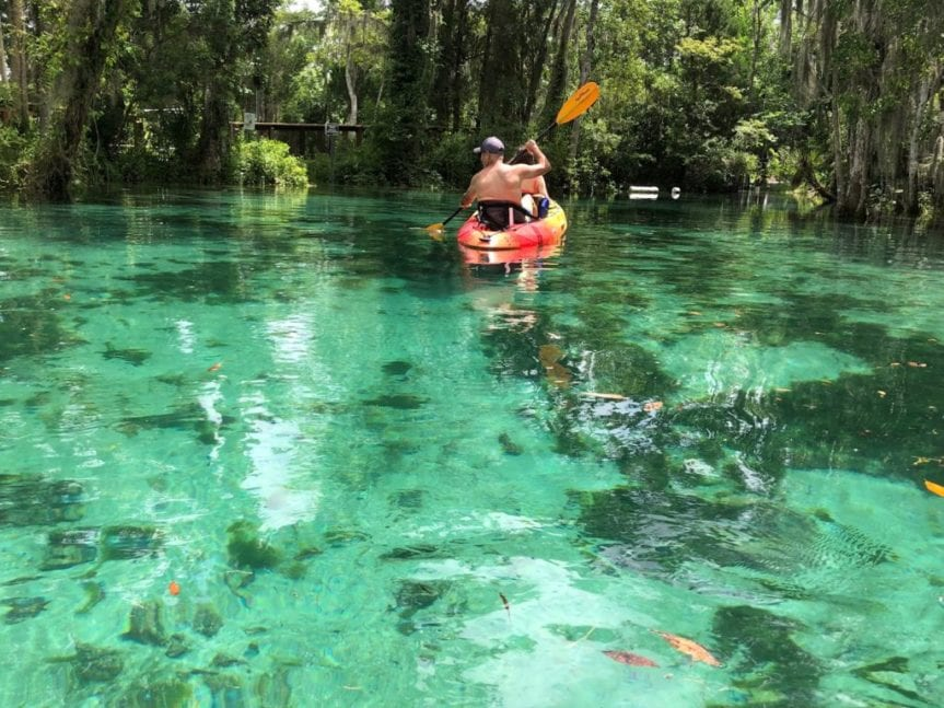 spring crystal river and three sisters springs