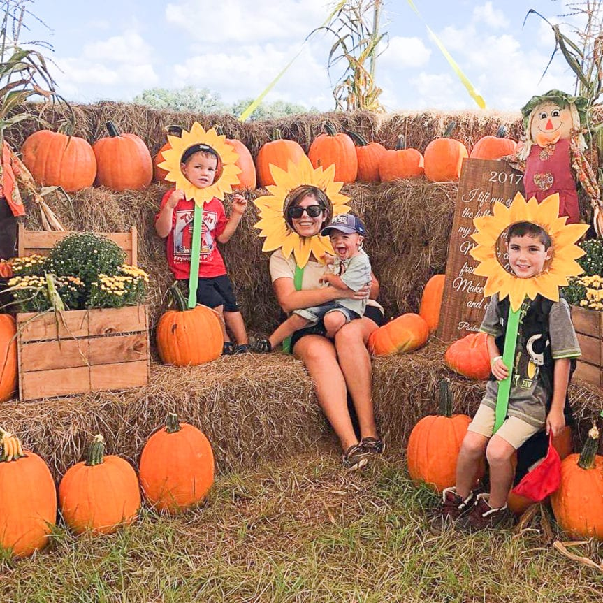pumpkin patches and corn mazes in Tampa Bay Pickin' Patch